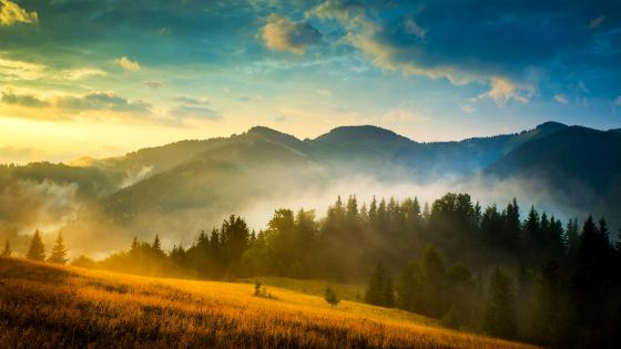 Misty mountains at dawn wallpaper
