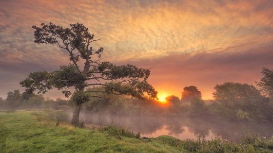 River bank at sunset wallpaper