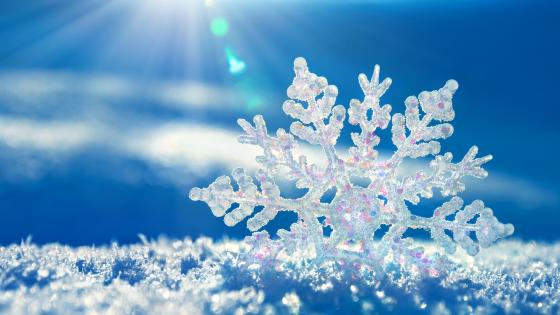 Snow crystal wallpaper