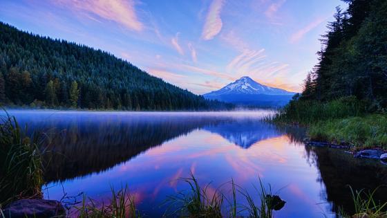 Mount Hood reflected in Trillium Lake wallpaper