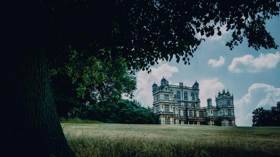 Wollaton Hall and Deer Park wallpaper