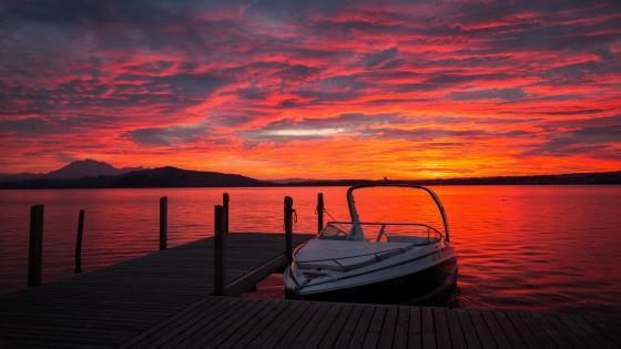 Motorboat at sunset wallpaper
