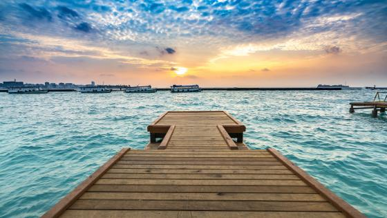Wooden jetty at sunset wallpaper