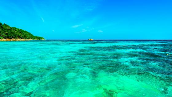 Azure blue sea wallpaper