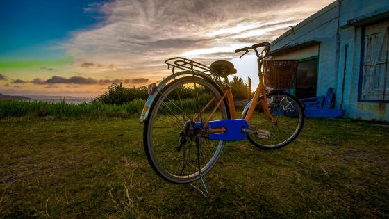 The Bike wallpaper