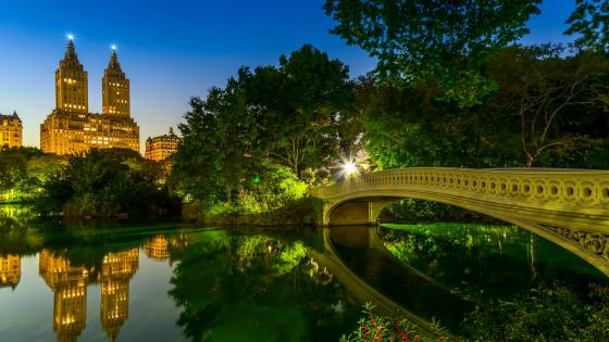 Bow Bridge (Central Park) wallpaper