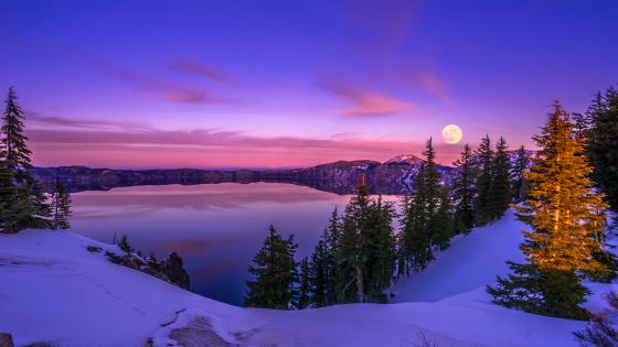 Winter moon wallpaper