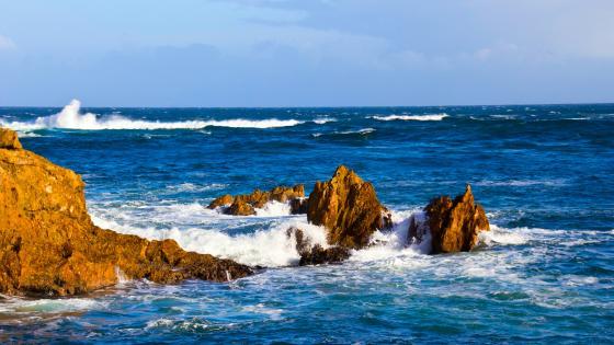 Wavy sea wallpaper