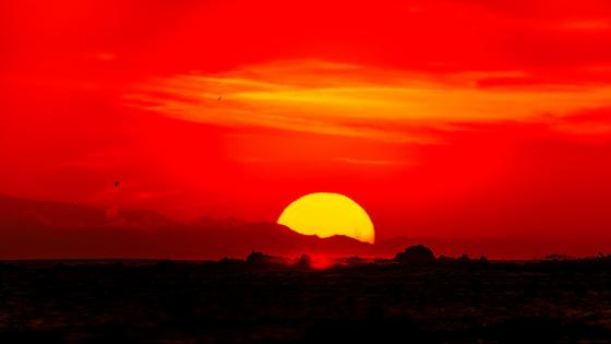 Red sky wallpaper