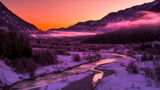Purple winter landscape wallpaper