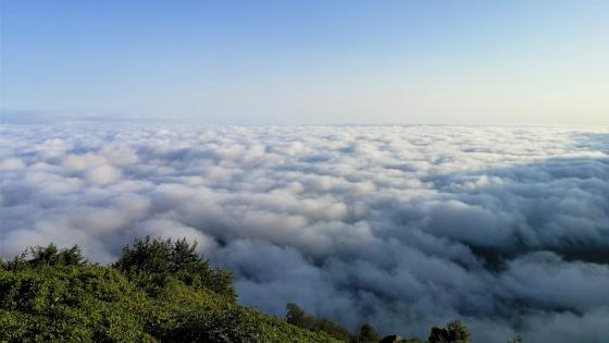 Sea of clouds wallpaper