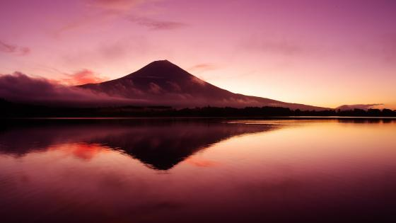 Lake Tanuki reflected Mount Fuji wallpaper