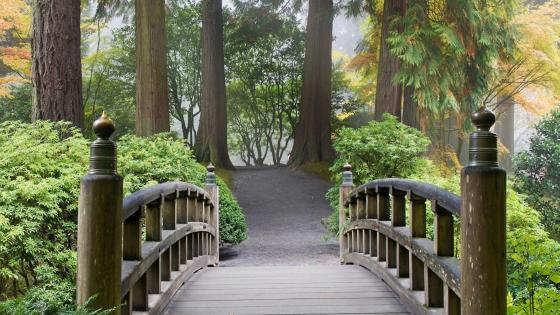 Footbridge in Portland Japanese Garden wallpaper