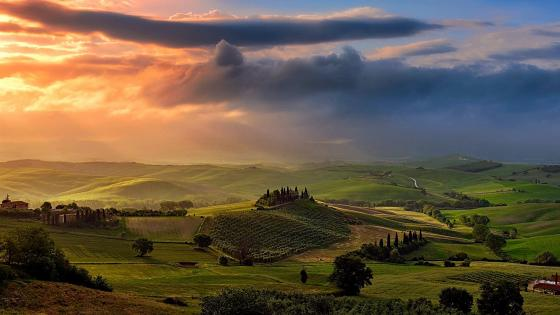 Green Tuscan Landscape wallpaper