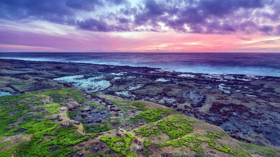 Oregon coastline at sunset wallpaper