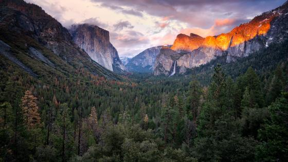 El Capitan from Yosemite Valley wallpaper