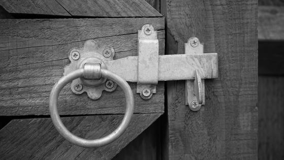 Antique door lock - Black and white photo wallpaper