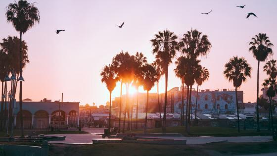 Venice (Los Angeles) wallpaper