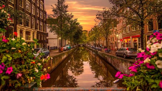 Amsterdam canal view wallpaper