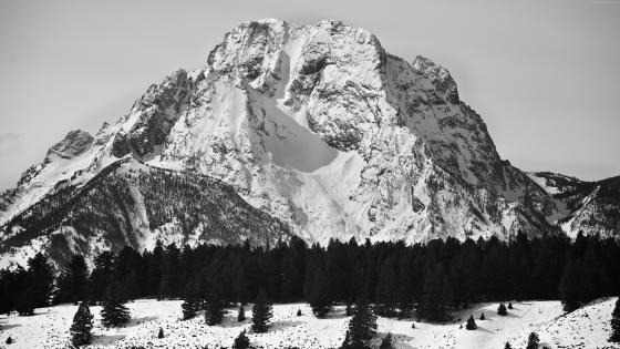 Mount Moran in Black and White wallpaper