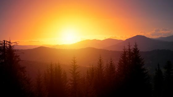 Mountain Sunrise wallpaper