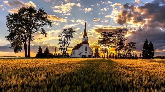 Church in field wallpaper