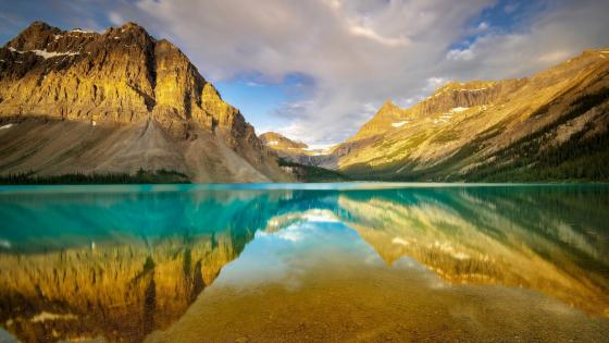 Bow Lake (Banff National Park) wallpaper