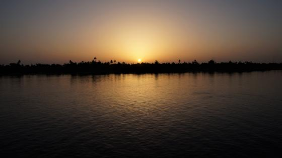Evening sun at the Nile wallpaper