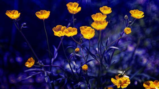 Blurry yellow flowers wallpaper