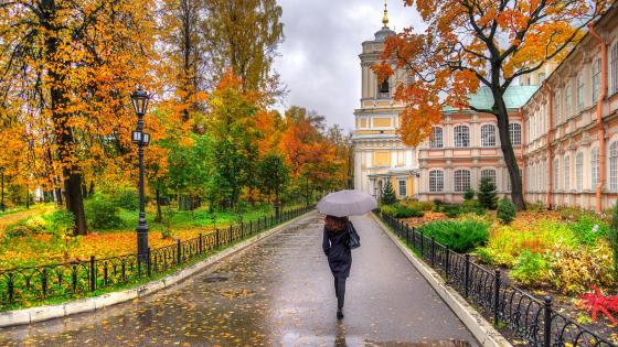 Rainy autumn day wallpaper