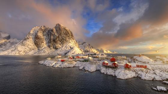 Red houses of Hamnoy (Norway) wallpaper