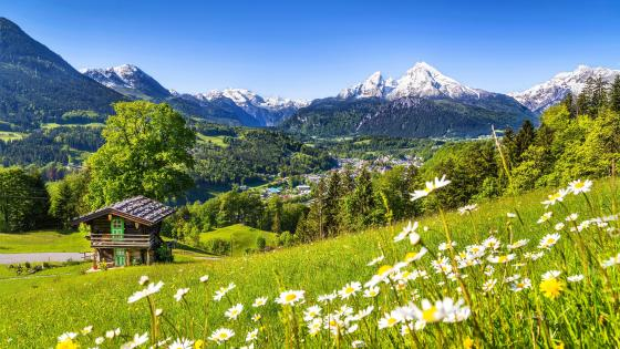 Watzmann in springtime, Bavaria, Germany wallpaper