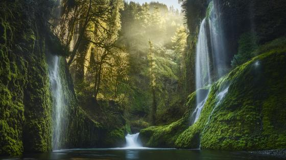 Weeping Walls, Eagle Creek Canyon wallpaper