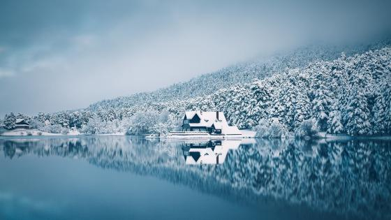 Snowy lakeside house wallpaper