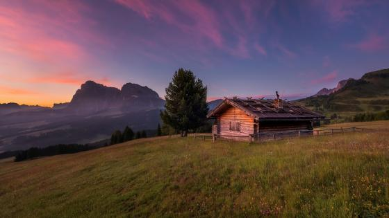 Log cabin in the mountain field wallpaper