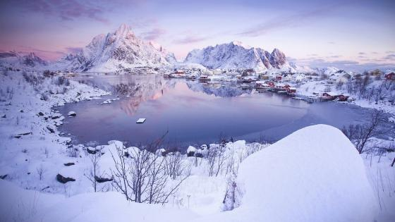 Snowy Reine wallpaper