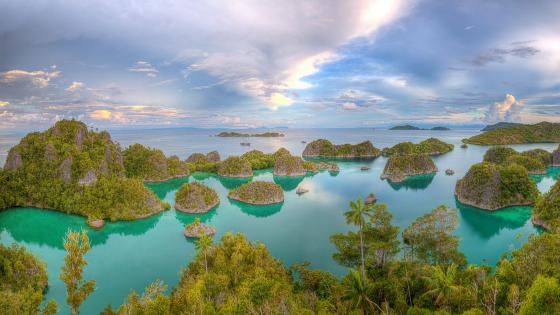 Indonesia Tropics wallpaper