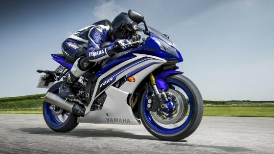 Yamaha YZF R6 wallpaper