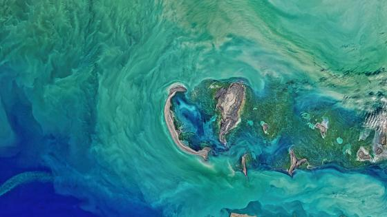 Satellite images of the ocean wallpaper