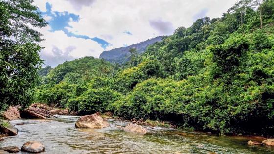 We Oya River - Yatiyanthota, Sri Lanka wallpaper