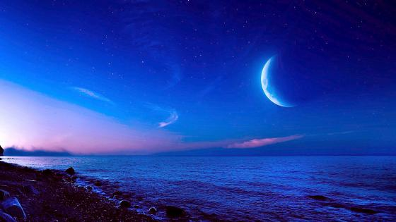 Moonlit sea wallpaper