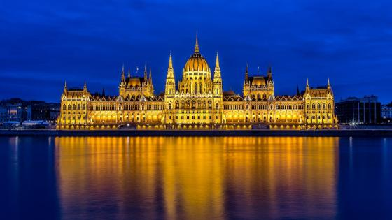 Hungarian Parliament Building at Budapest by night wallpaper