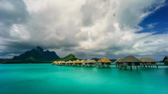 Bungalows in Bora Bora wallpaper