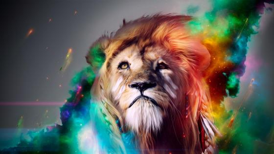 Colourful Lion wallpaper