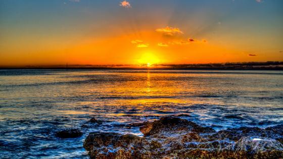 Seashore at sunset wallpaper