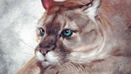 Cougar - Painting art wallpaper