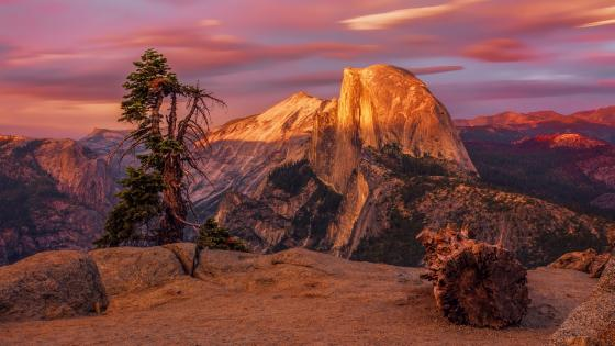 Yosemite National Park, Half Dome wallpaper