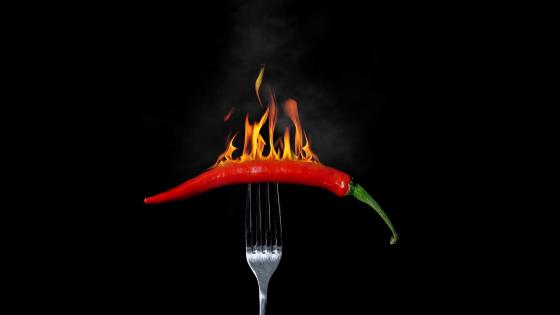 Hot chili pepper wallpaper