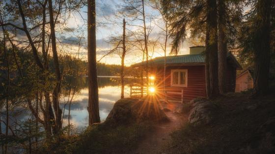 Morning sunlight on the lakeside wallpaper