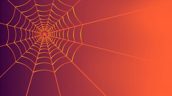 Spiderweb graphics wallpaper